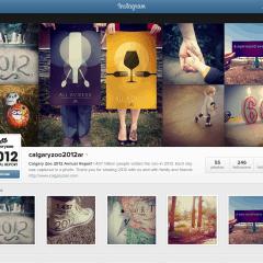 calgaryzoo 2012 annual report on Instagram